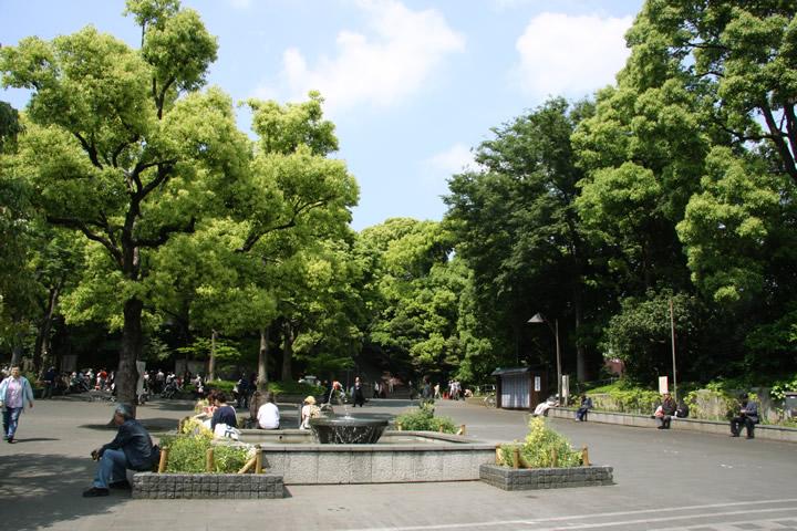 上野恩賜公園ポケゴー!
